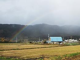 rainbow260